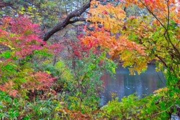 Yanaginuma Pond, end of the trail