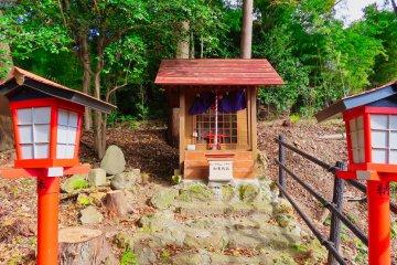 The Neko Inari Shrine