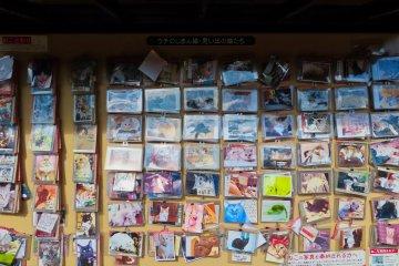 The Neko Inari Shrine, cat photos