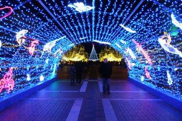 Tama Center Illuminations