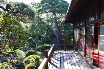 The garden at Yamamoto-tei