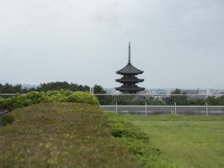 An amazing view of the cities five-story Pagoda in Nara