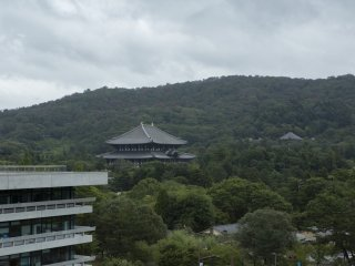 The incredible structure that is Tōdai-ji is just as impressive from above from the Nara Prefectural Office