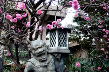 Musashino City - Temples and Shrines