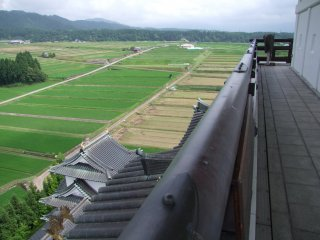 The castle sits in the middle of a large rice field
