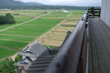 그 성은 넓은 논 한가운데에 있다