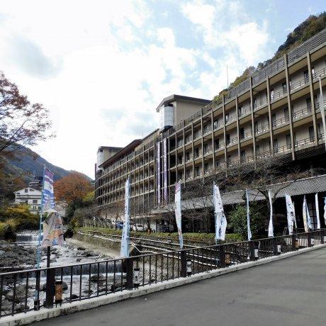 Hotel Hakone Tenseien