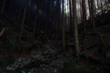 The hidden trail to Kyozuka 18