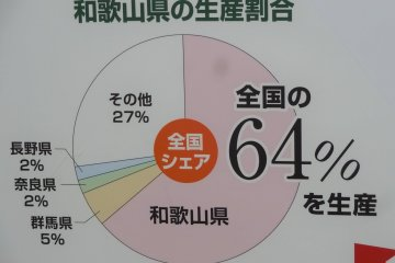 The stats speak for themselves: Wakayama ranks top in ume production
