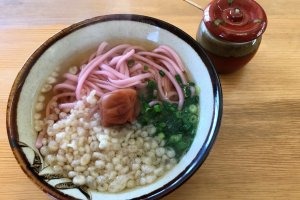 The dish to order here is pink ume udon, with an extra large umeboshi on top