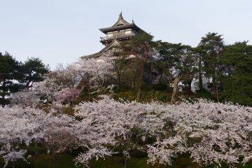 Maruoka Castle Park