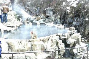 Адская долина - Дзигокудани