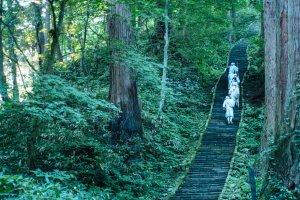 Yamabushi climbing Mount Haguro