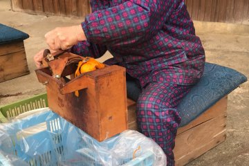 Here is your role model. This woman has been peeling persimmon all her life.