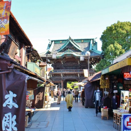 Katsushika City Ward - Landmarks & History