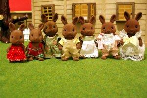 The Wildwood Rabbit Sylvanian Family