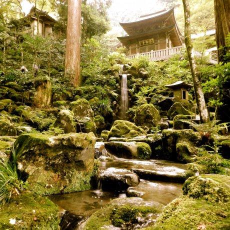 Tranquil Mystery at Daiyuzan Saijoji Temple