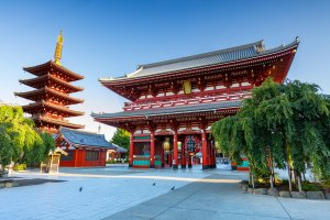 Hozo-mon Gate and Five-Storied Pagoda