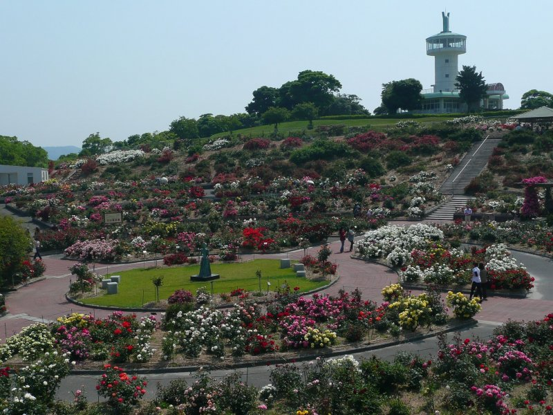 This is Japan's largest rose garden
