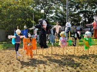 Scarecrows influenced by the gradual seepage of Halloween into Japanese popular culture