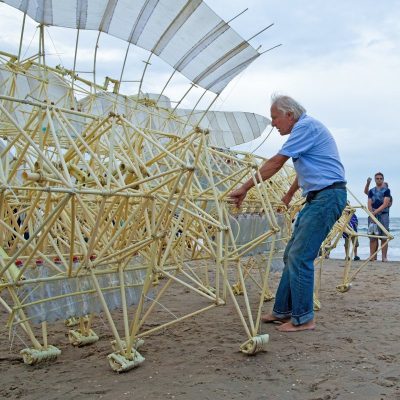 Jansen's strandbeests move on their own through wind power