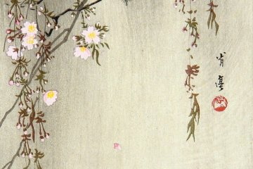 Watanabe Shotei: Brilliant Birds, Captivating Flowers