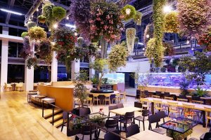 Illuminated flower chandeliers will decorate the venue