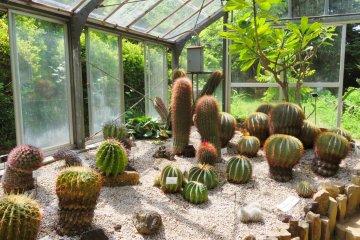 Yokohama Children's Botanical Park Green House