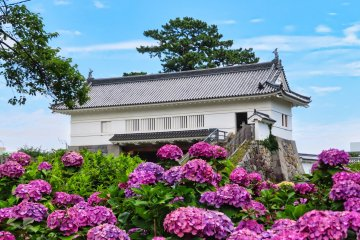 One of the Museums at Odawara Castle Park