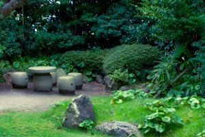 The well maintained garden is quite pretty and adds a lot to the lounge area
