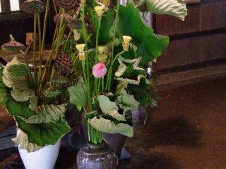 De superbe fleurs d'été décorent la salle