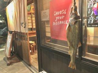 Сухая огромная рыба завлекает посетителей