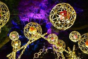 Bamboo chandeliers