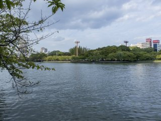 Enjoying the Okawa River on the walk to the gallery is the perfect way to arrive