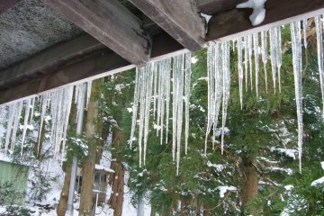 Icicles hanging from eaves
