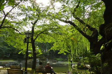 The garden behind the temple is a peaceful spot to sit and think.