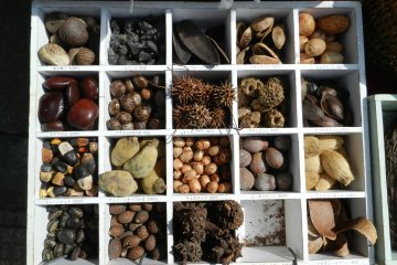 Plenty of seasonal produce.