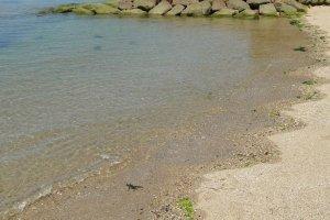 Praia de Tsutsumigaura