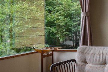 View the luscious greenery right outside your window