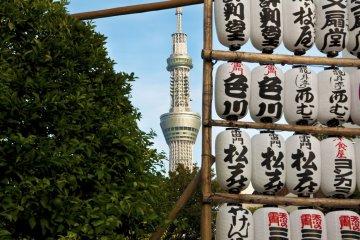 센소지 사원의 도쿄 스카이 트리