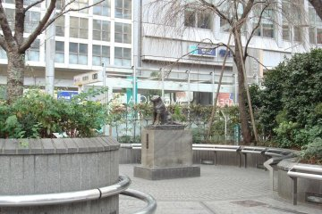 North side of the Square in the very early morning, including Hachiko
