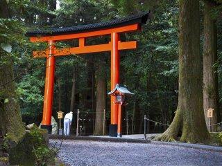 鳥居をくぐる前に一礼する。神宮の中は神々を祀る神聖な場所だ。敬意を表さねばならない