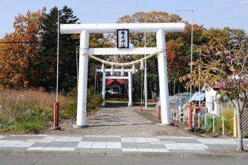 北海道/道東/阿寒郡/鶴居村~伊藤丹頂鶴保護區