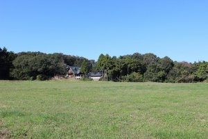 牛の牧草地。ここに春から秋まで牛が放たれる。牧草の刈り取りもここで