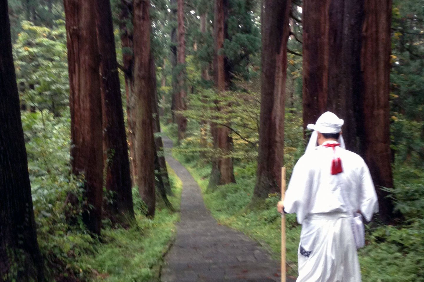 The mountain guide leads his yamabushi followers through the forest and up the mountain.