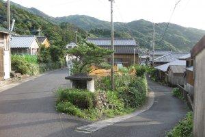 Yakushima Island.