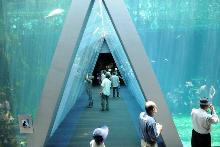 พิพิธภัณฑ์สัตว์น้ำฟุกุชิมะ