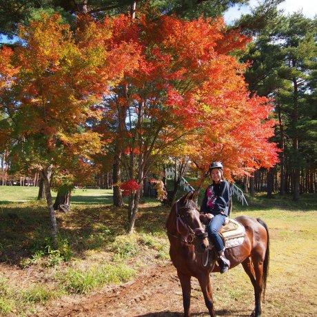 Faire de l'équitation à Yamanashi