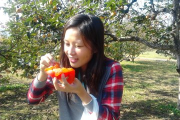 Giving the juicy persimmon a try; it was so juicy it spilled all over!