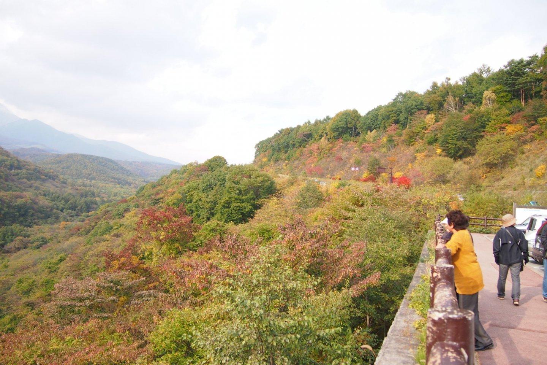 Enjoy a great view from Kougen Ohashi (Kougen Big Bridge).